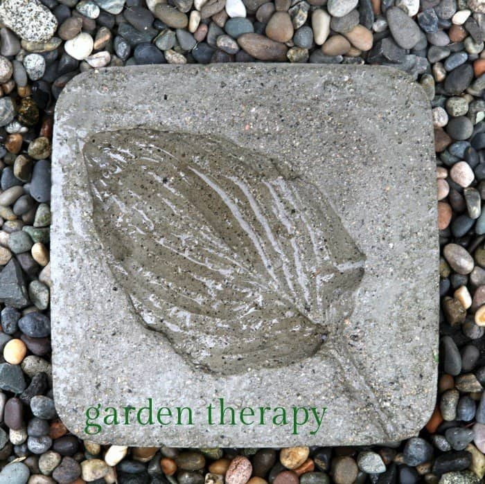 Granulated leaf print stepping stone