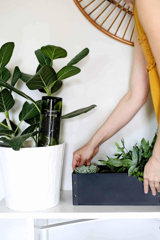 Selfwatering planters diy