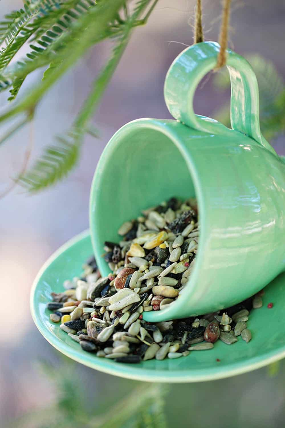 Teacup bird feeder diy
