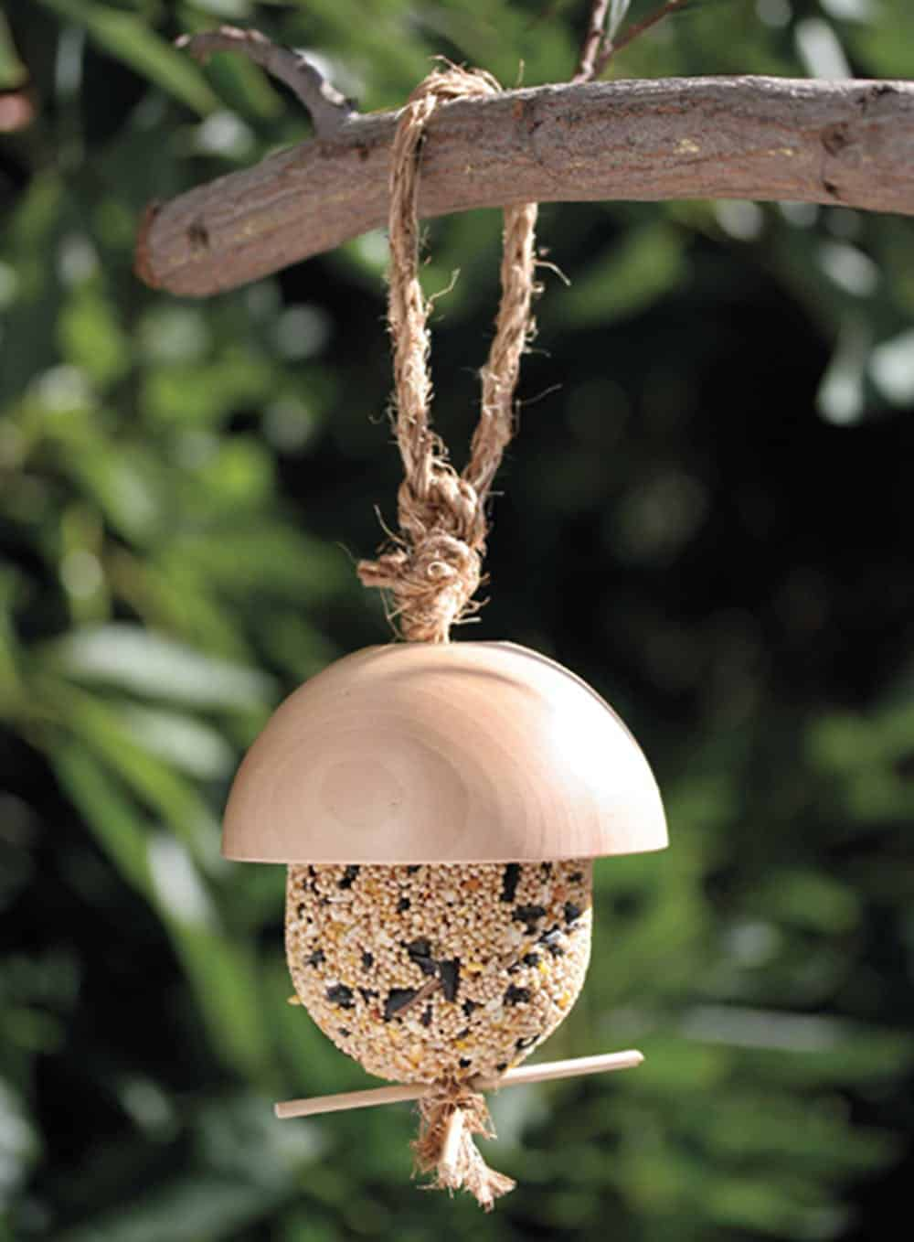 Bare wood bird feeder diy
