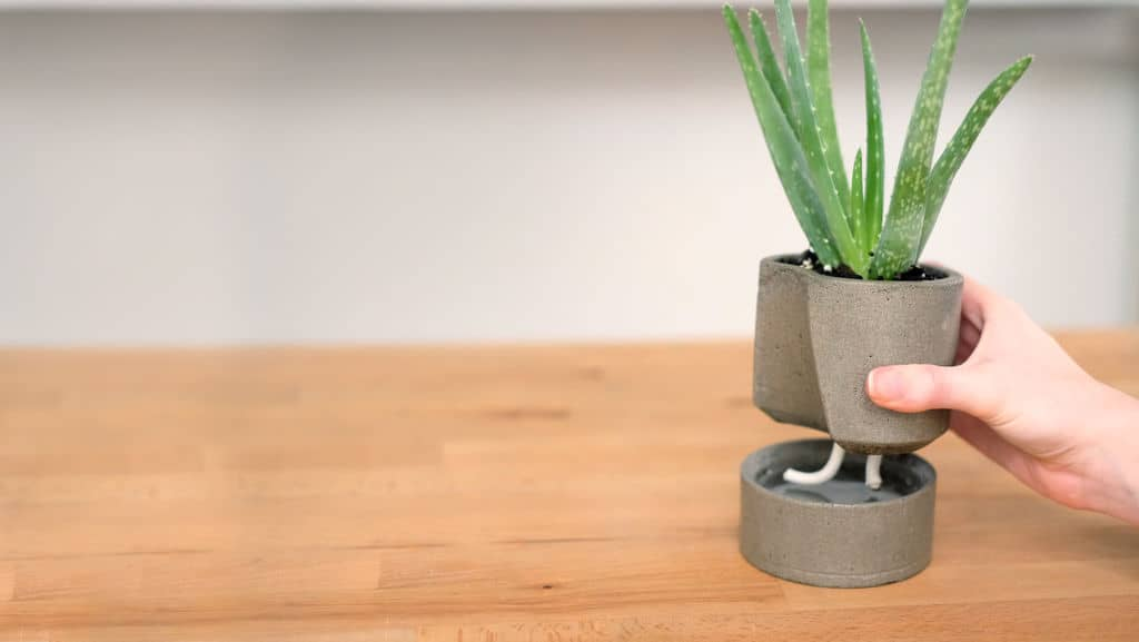 Diy concrete self watering planter