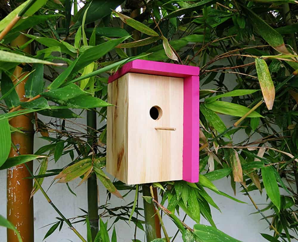 Diy modern bird house