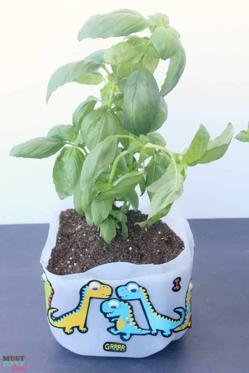Diy self watering milk jug planter