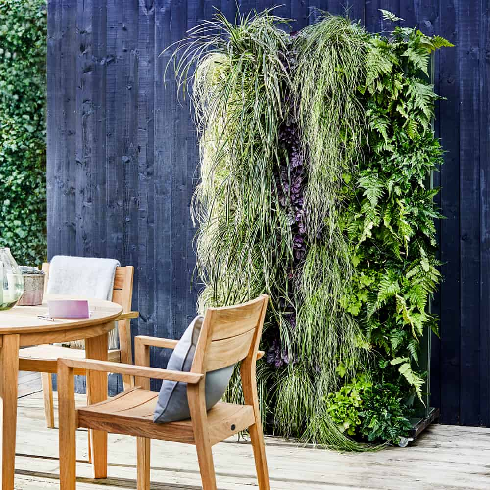 Make your own living wall