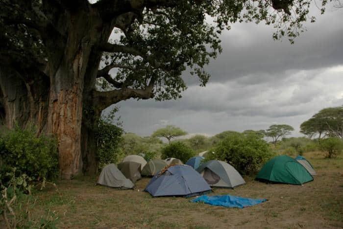 Tarp shelter extensions