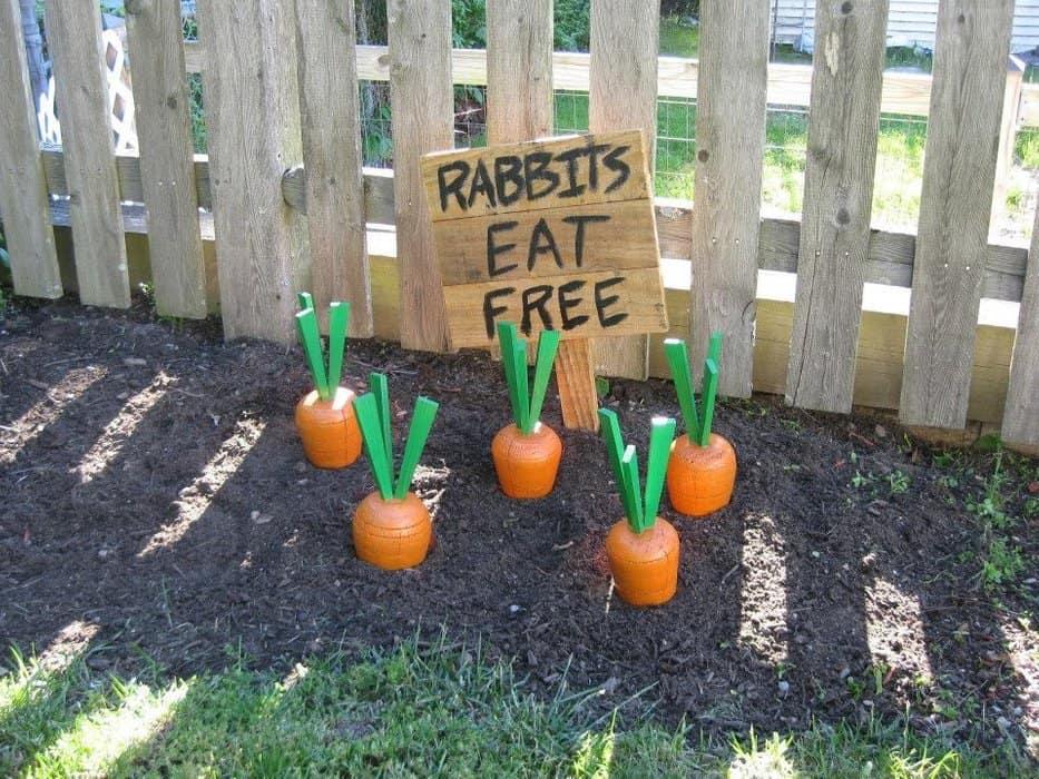 Wooden carrot garden