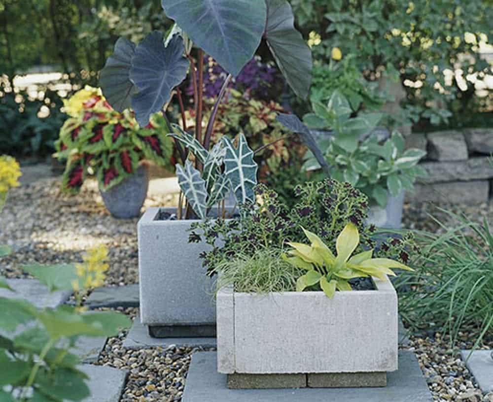 Diy modern paver planters