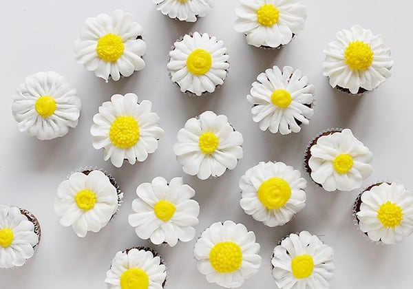 Butercream daisy cupcakes
