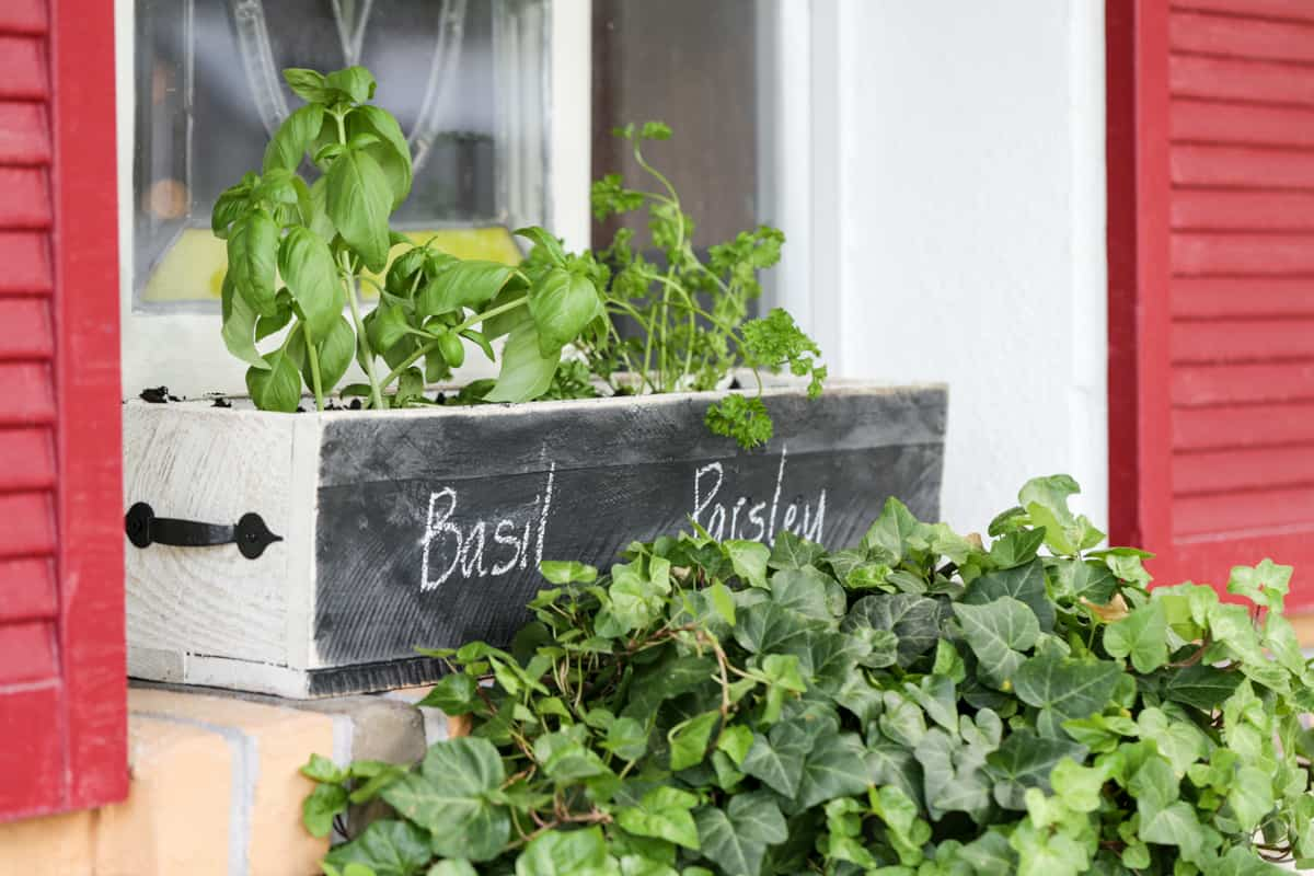 Diy herb and chalk herb box