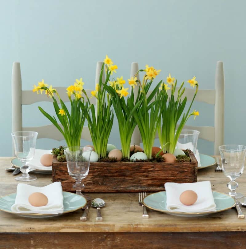 Daffodil wooden garden box with nestled easter eggs