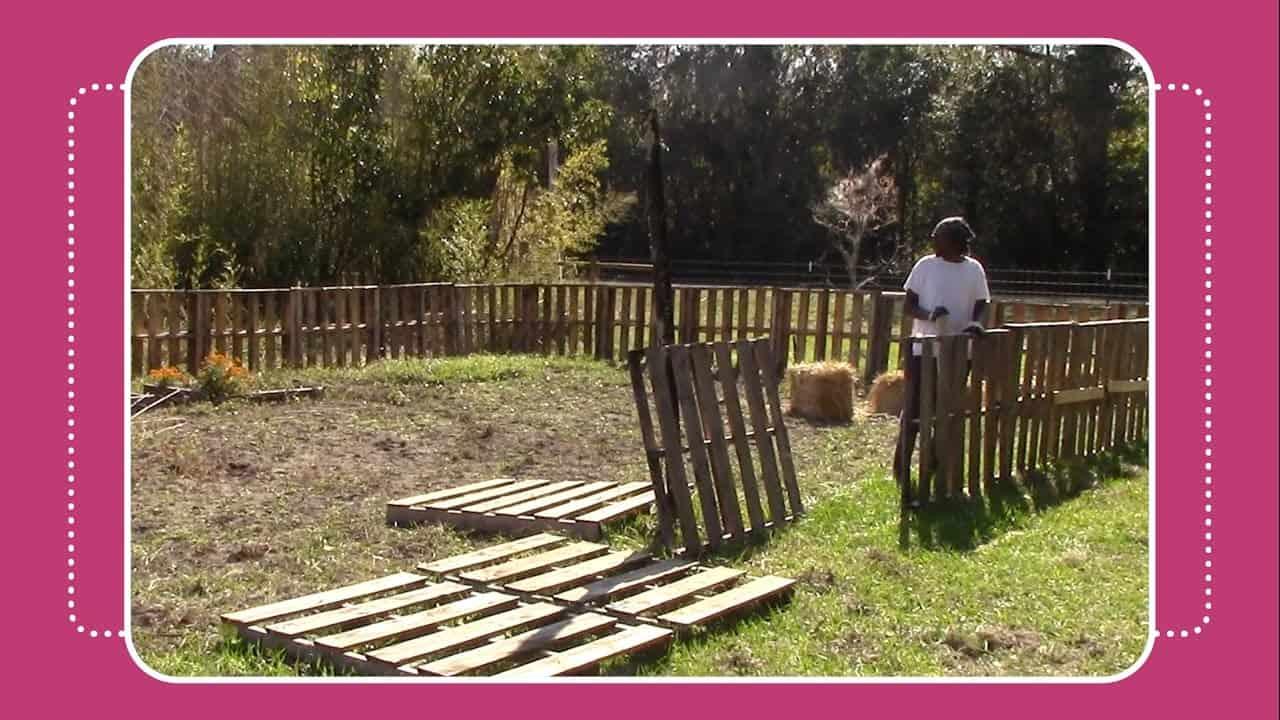 Full pallet veggie garden fence