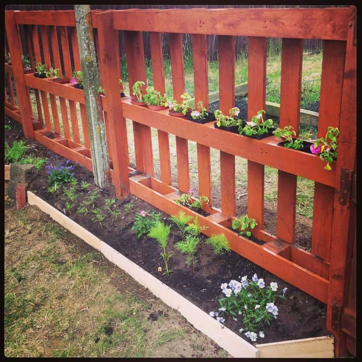 Half height garden pallet fence