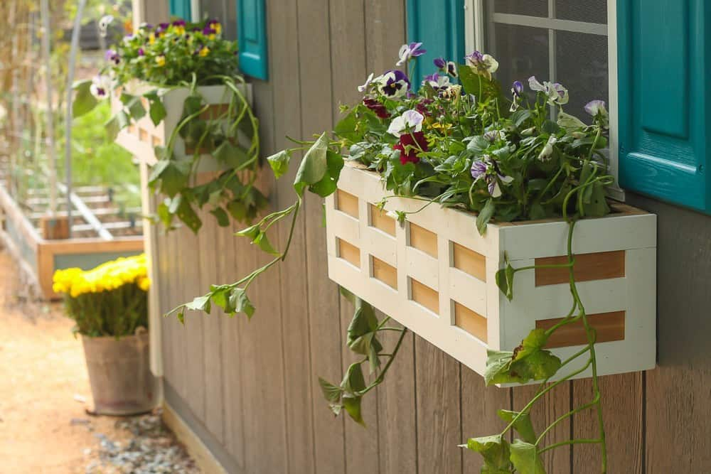 Lattice window box