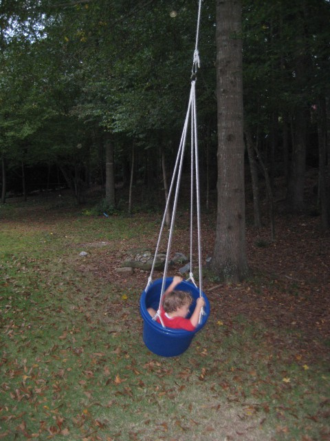 Rope and bucket swing