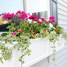 Trimmed diy window planter