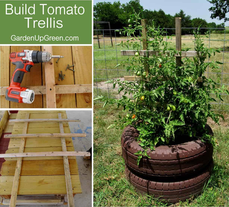 Upcycled tire tomato trellis