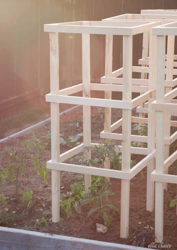 Wood frame tomato cages