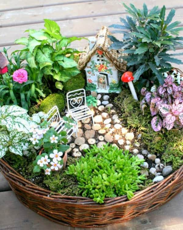 Diy basket fairy garden 2