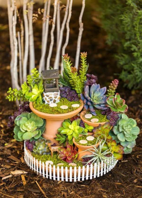 Diy succulent fairy garden 2