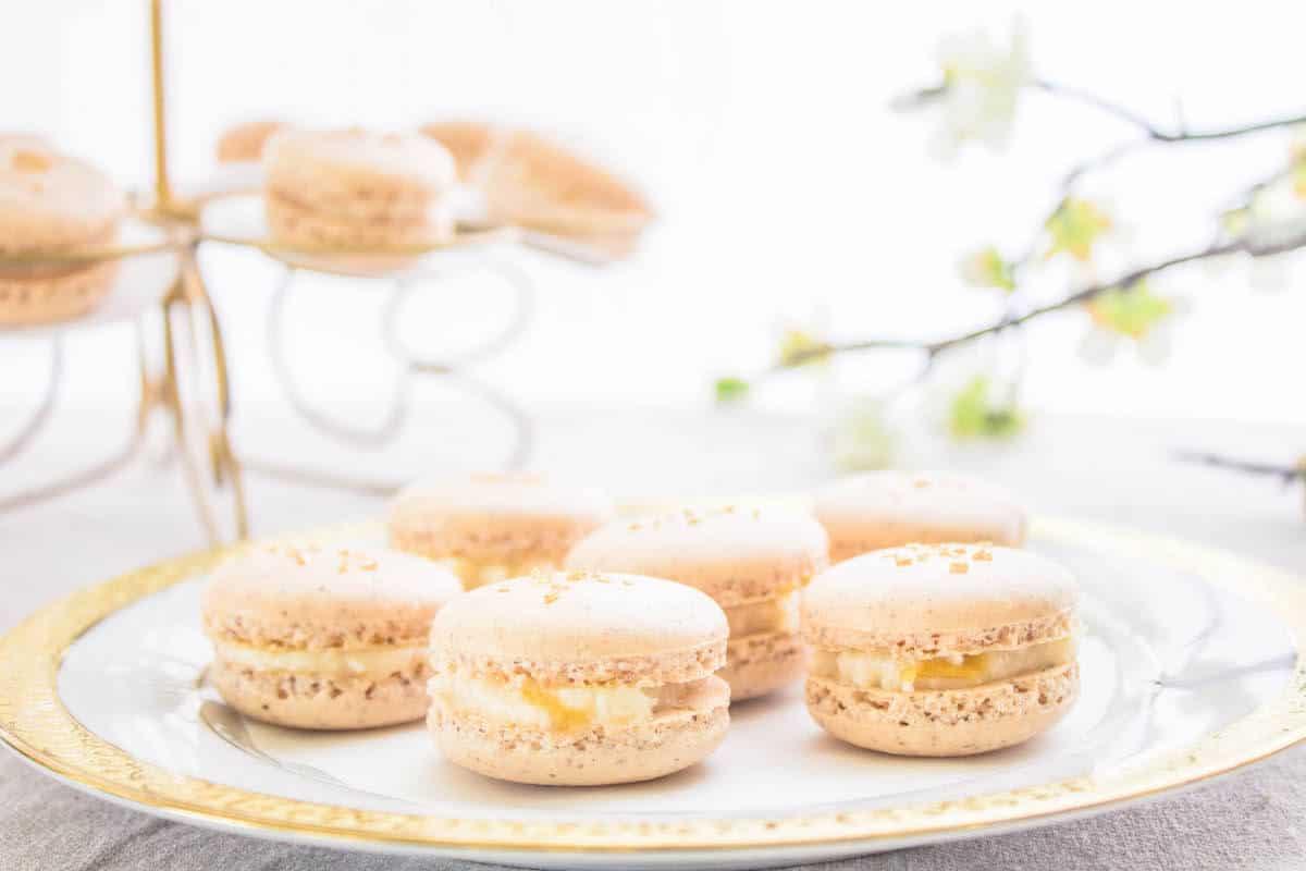 Homemade apricot macarons