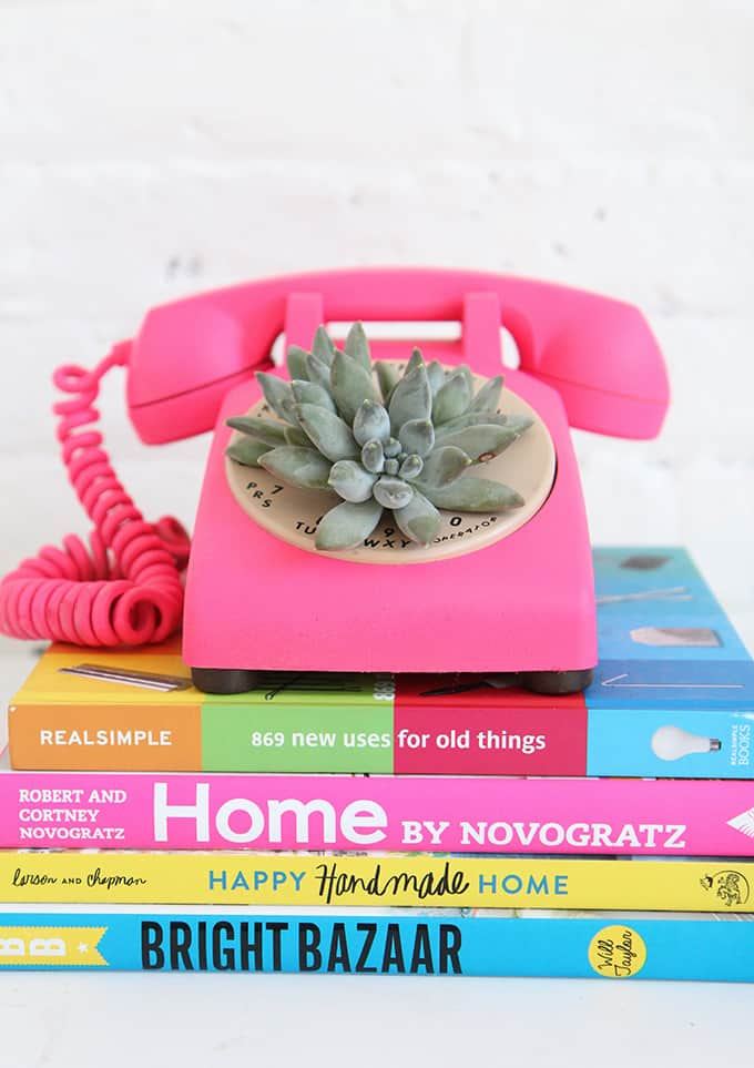 Rotary phone succulent planter