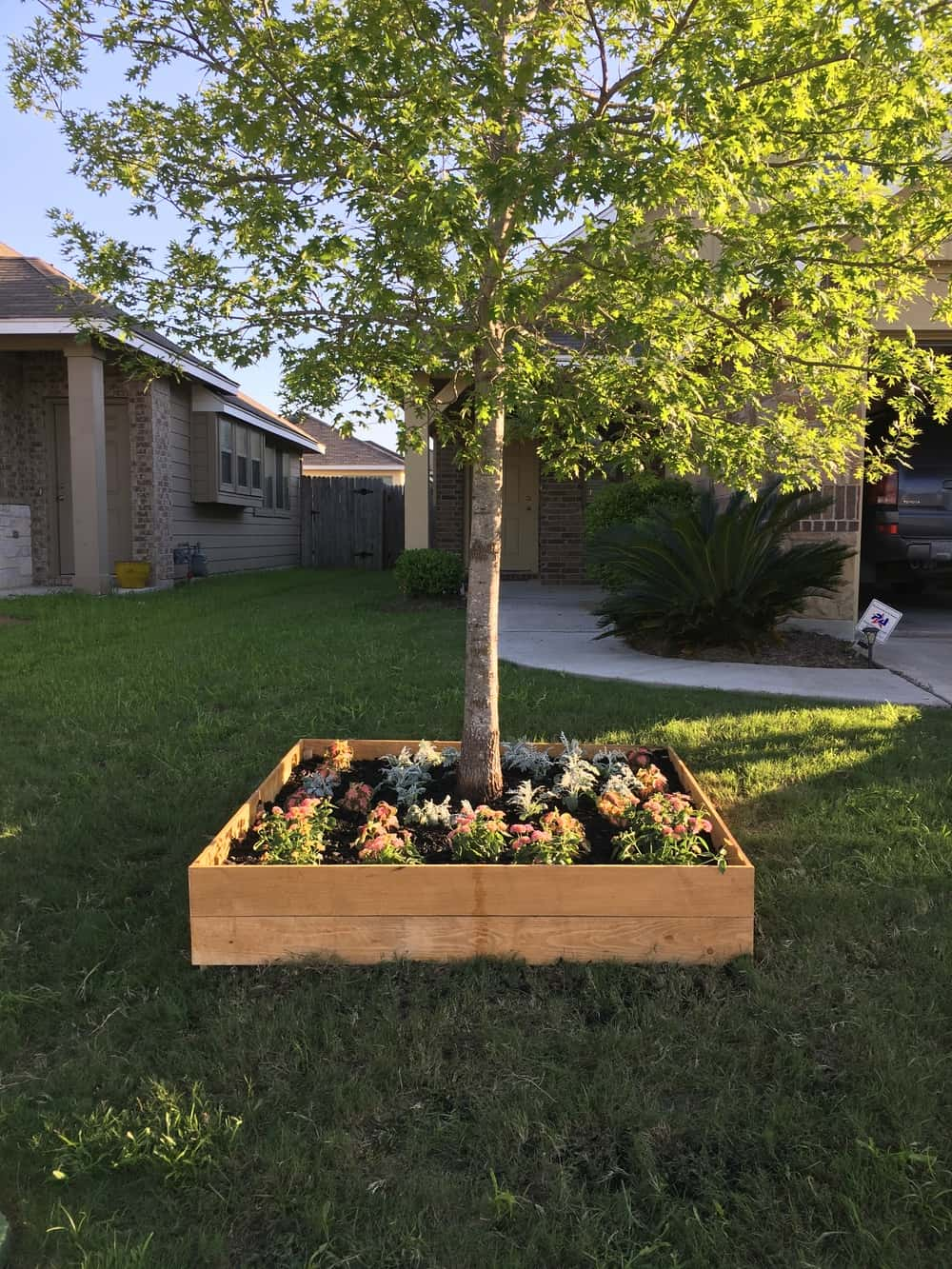Diy raised tree flower bed