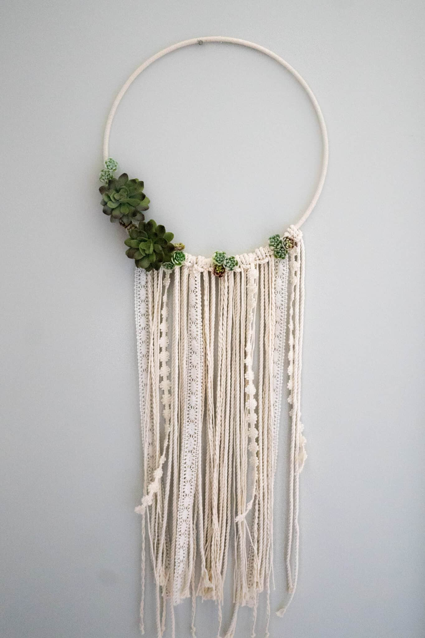Diy succulent ring wall hanging