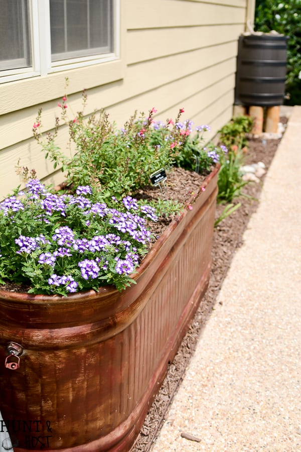 Large metal basket flower bed