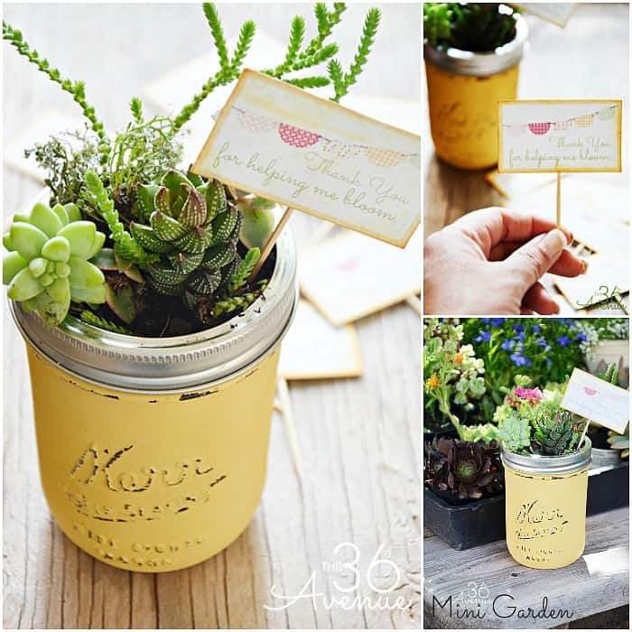 Painted mason jar succulent gardens