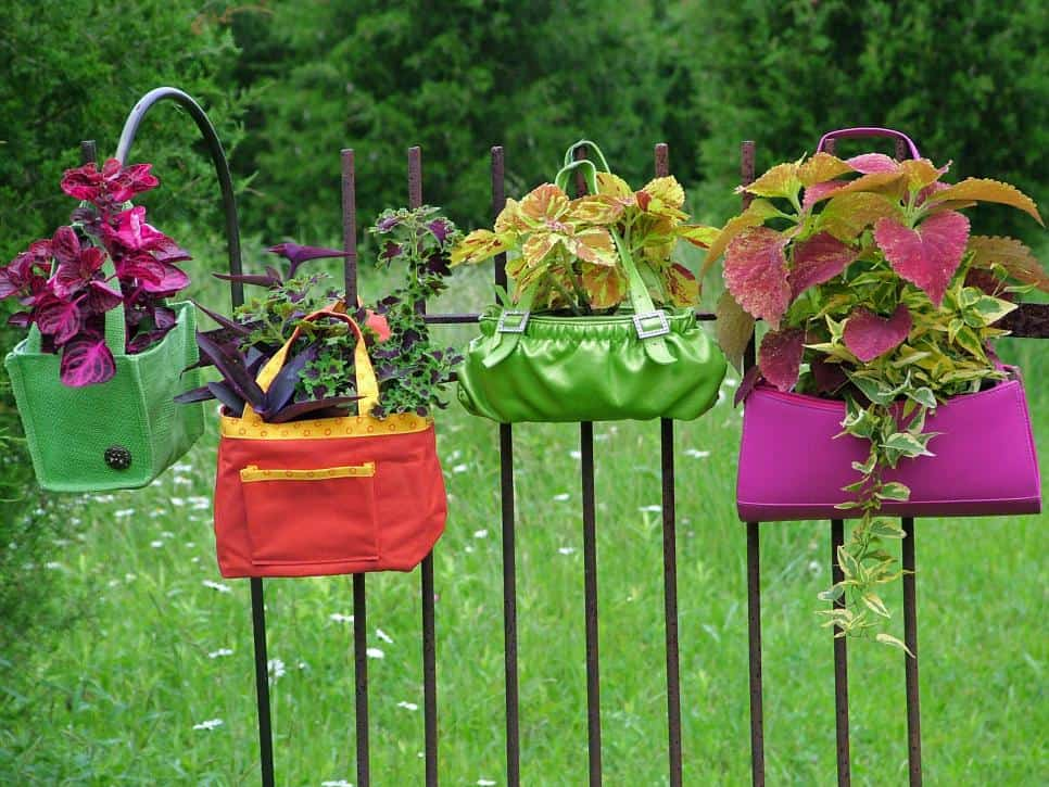 Purse and fence garden