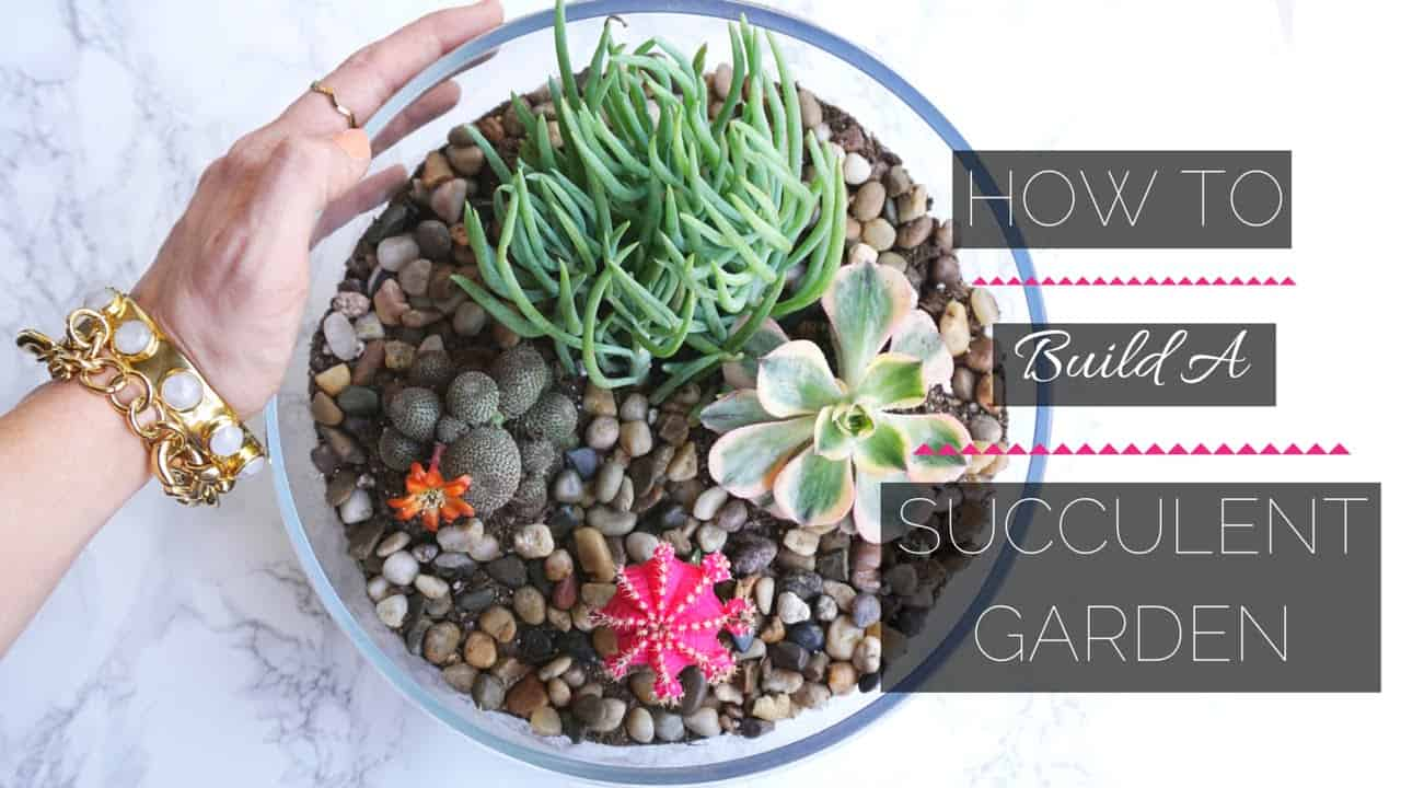 Rocky garden in a glass bowl