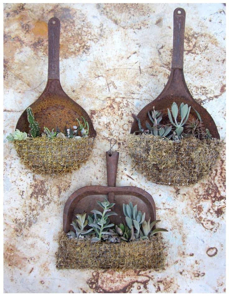 Rusty pan garden