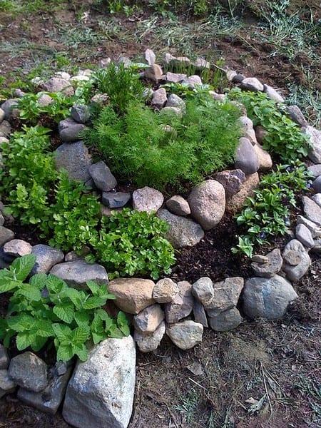 Spiralled rock garden