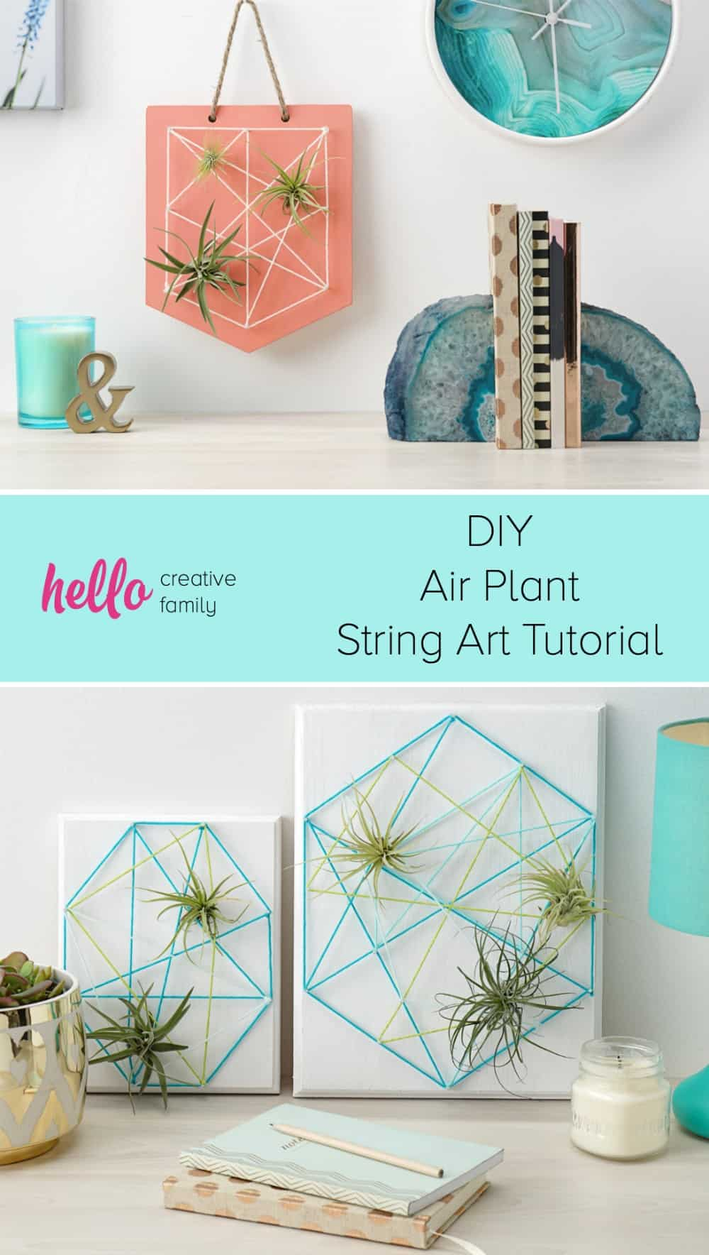 Diy air plant string art