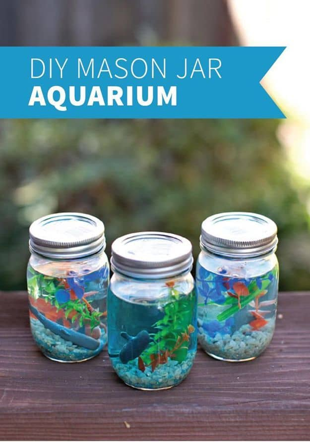 Diy mason jar aquariums