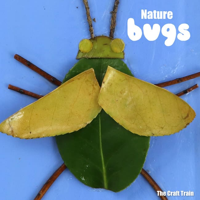 Diy nature bugs