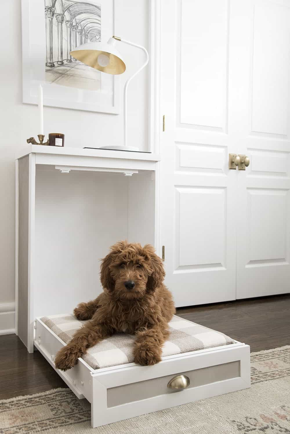 Easy doggy murphy bed from a side table