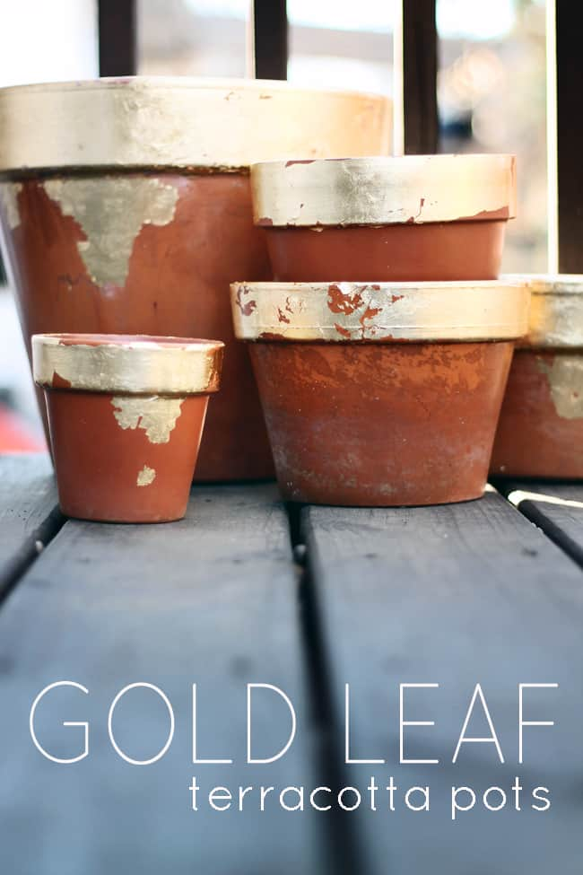 Gold leaf terra cotta flower pots