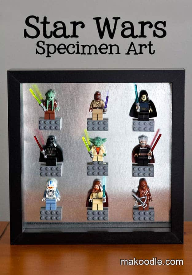 Star wars speciment wall art