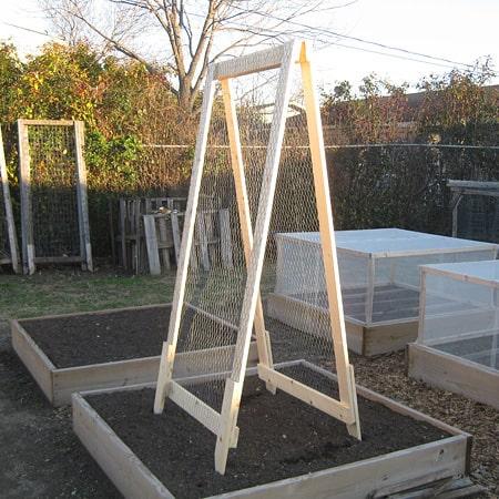 A frame veggie trellis
