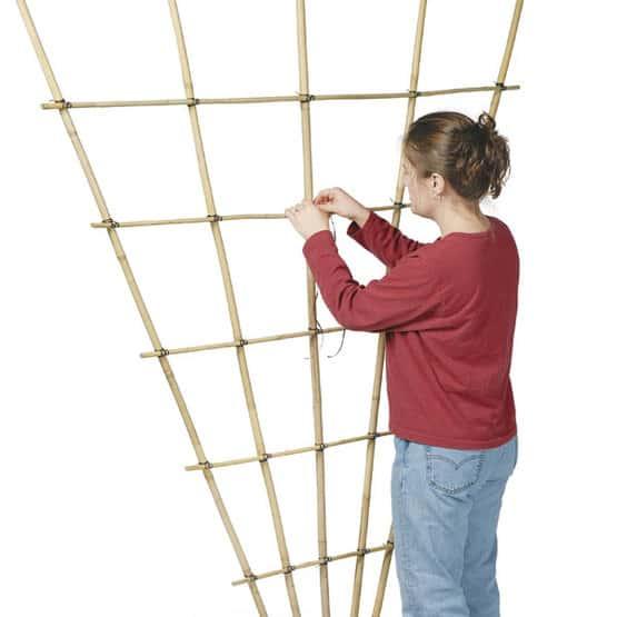 Diy bamboo wall trellis