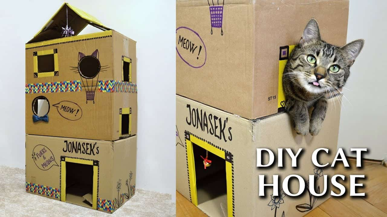 15 Cool Diy Cat Houses