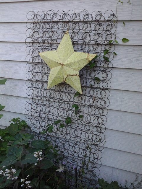 Old mattress springs trellis
