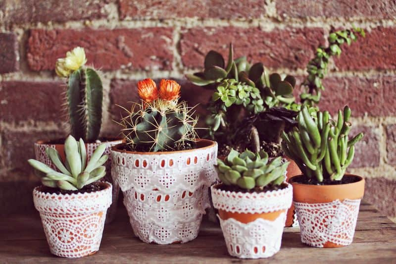Pretty lace decoupaged flower pots