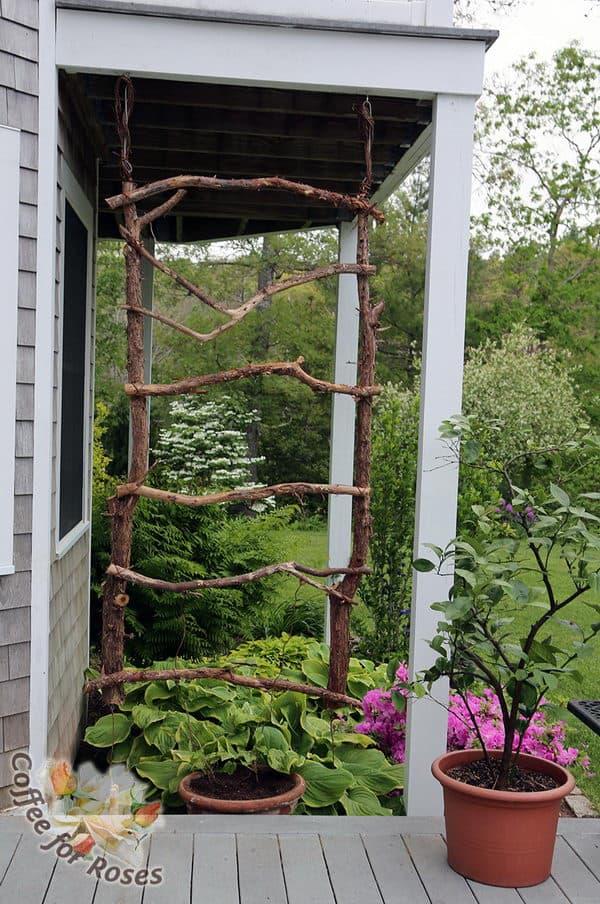 Rustic branch trellis
