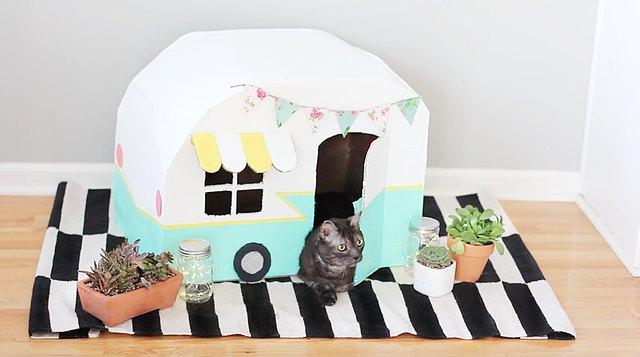 Vintage kitty camper