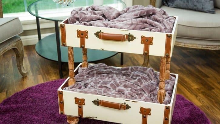 Vintage suitcase cat bunkbeds