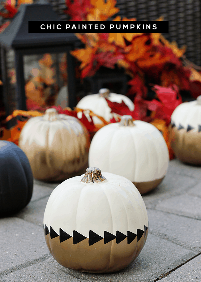 Chic gold, black, and cream pumpkins