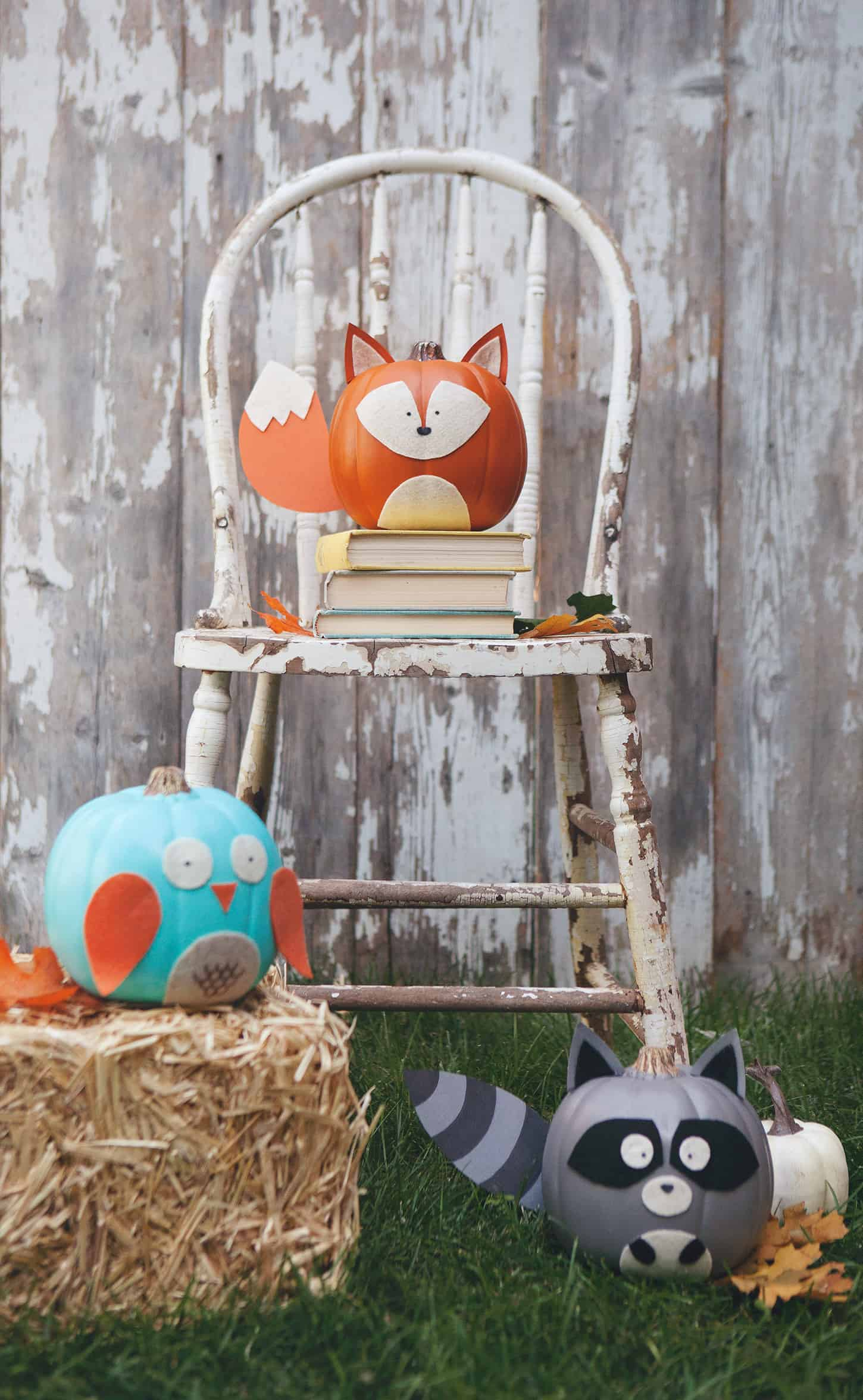 Cute woodland animal pumpkins