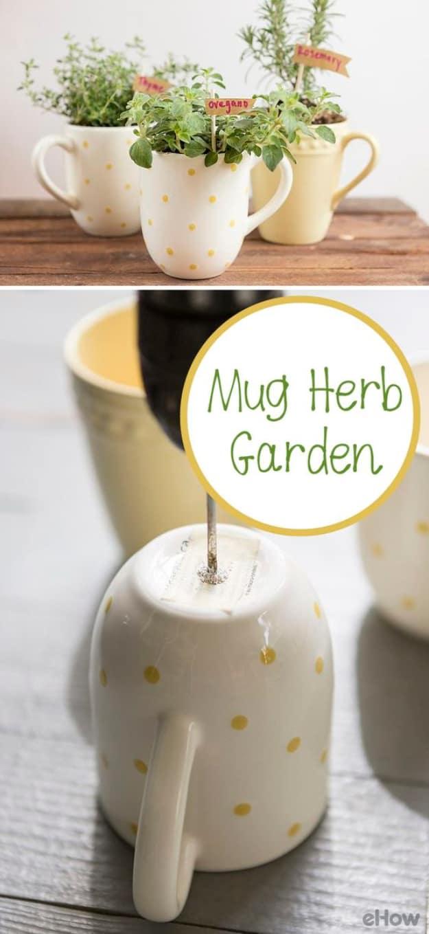 Diy mug herb gardens